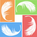 Feather vector Royalty Free Stock Photo