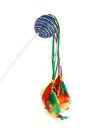 Feathered pole cat toy multicolored on a white background Royalty Free Stock Photo
