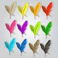 12 feathers in 12 different colors