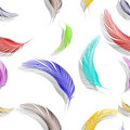Feathers seamless texture Stock Photography