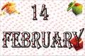 14 February valentines days