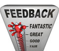 Feedback level measuring thermometer opinions reviews the word on a customer or audience response to a product event initiative or Royalty Free Stock Image