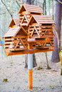 Feeders for birds. Royalty Free Stock Photo