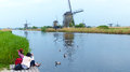 Feeding the ducks at kinderdijk one of most visited touristic attractions in netherlands Royalty Free Stock Images
