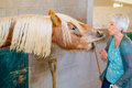 Feeding the horse elderly woman is being attacked by beautiful hungry while trying to feed it Royalty Free Stock Photos