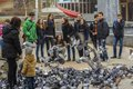 Feeding pigeons unidentified teenagers feed on the street on february in craiova romania Royalty Free Stock Photography