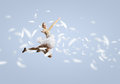 Feeling of lightness young pretty ballerina girl making jump in dance Royalty Free Stock Photo