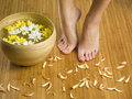 Feet and flower Royalty Free Stock Photography