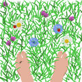 Feet on the grass where a lot of flowers and insects Stock Image