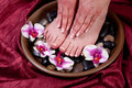 Feet and hands with manicure and pedicure Stock Photography