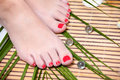 Feet leg with perfect spa pedicure on bamboo Royalty Free Stock Photography