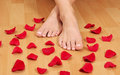 Feet and petals Stock Image