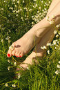 Feet in spring flowers Royalty Free Stock Photography
