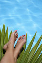Feet and Tropical Pool Royalty Free Stock Images