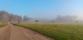 Felbrigg Hall, Norfolk in the winter mist early morning