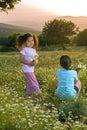 Feld mit zwei Mädchenblumen am Sonnenuntergang Stockfoto