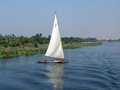 Felucca on the nile coastal scenery showing a in egypt Royalty Free Stock Photography
