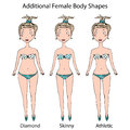 Female Body Shape Types. Diamond, Skinny, Athletic Girl. Realistic Hand Drawn Doodle Style Sketch. Vector Illustration