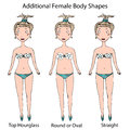 Female Body Shape Types. Top Hourglass, Round or Oval and Straight . Realistic Hand Drawn Doodle Style Sketch. Vector