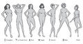 Female body shapes in greyscale Royalty Free Stock Photos
