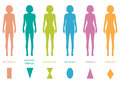 Female body types anatomy woman front figure shape vector silhouette Stock Photography