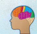 Female brain profile of with puzzle use for a variety of concepts Stock Image