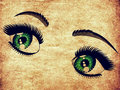 Female eyes of emerald color with long eyelashes on paper background Stock Image