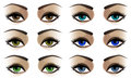 Female eyes vector illustration of in six colors Stock Photography