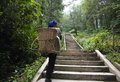 Female farmer chinese carrying her vegetables in a basket in yuanyang Stock Photos