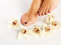 Female feet with beautiful pedicure after spa procedure closeup photo of a on white background Stock Photos