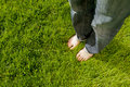 Female feet relaxing on grass Royalty Free Stock Image
