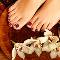 Female feet at spa salon on pedicure procedure closeup photo of a legs care concept Royalty Free Stock Photography