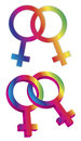 Female gender same sex symbols illustration intertwined isolated on white background Royalty Free Stock Images
