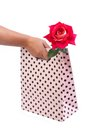 Female hand holding a gift bag with a fresh rose isolated Stock Photos