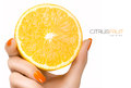 Female hand holding a luscious healthy lemon template design with pretty manicured nails with orange nail varnish in matching Stock Images