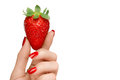 Female hand holding a luscious ripe strawberry isolated on white clean eating with pretty manicured nails with red nail varnish in Stock Image