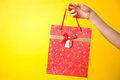 Female hand holding red bag on yellow background Royalty Free Stock Photo