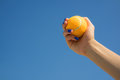 Female hand holds a bright orange tennis ball on a background of blue sky Royalty Free Stock Photo