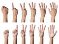 Female hands counting Stock Photography