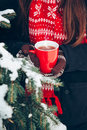 Female hands in mittens holding a cup of tea, outdoors Royalty Free Stock Photo