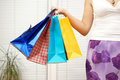 Female holding shopping bags four Royalty Free Stock Photos