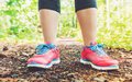 Female jogger on a forest trail Royalty Free Stock Photo