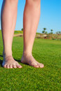 Female legs on grass Royalty Free Stock Image