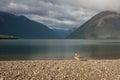 Female mallard basking at lake rotoiti picture of new zealand Royalty Free Stock Photography
