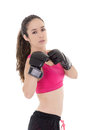 Female mixed martial arts fighter in mma style gloves strikes a fight stance this image has attached release Royalty Free Stock Photography