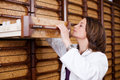 Female pharmacist searching medicines in drawer mid adult at stockroom Royalty Free Stock Image