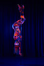 Female Pole Dancer In Bright N...