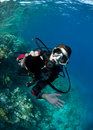 Female scuba diver. Royalty Free Stock Photo