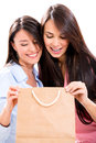 Female shoppers looking shopping bag isolated over white background Royalty Free Stock Images