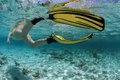 Female snorkeler diving in beautiful blue lagoon Stock Images